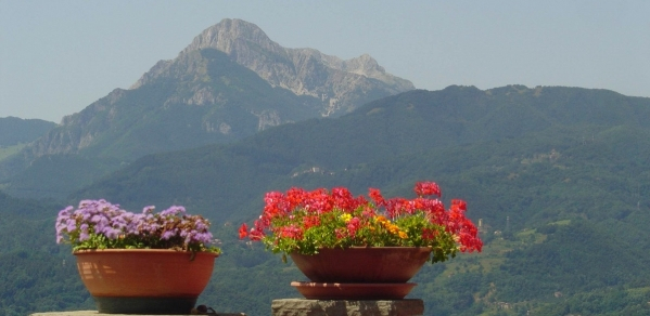 View of the Apuane Alps